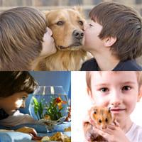 Домашние животные для детей: какие питомцы им подходят?